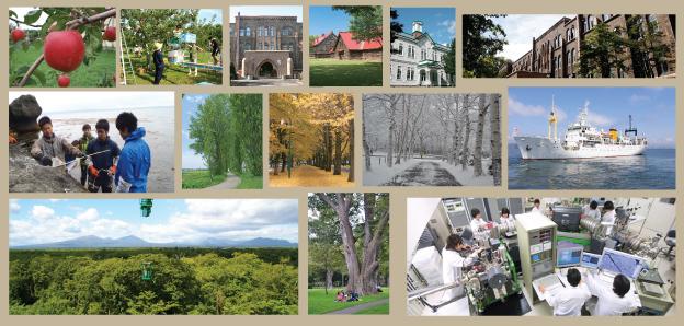 Why Hokkaido University?