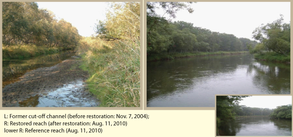 Figure 2. River scenery in a meander restoration section and in a natural section The scenery after meander restoration (R) is similar to that in a natural section which still remains on the original meandering river (lower R), showing that this project successfully restored scenery similar to that in natural condition.