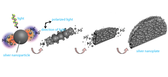Fig. 1 Formation of a Silver Nanoplate