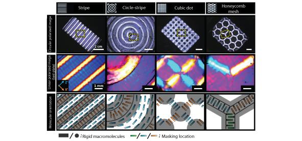 Various superstructures of rigid macromolecules within gels