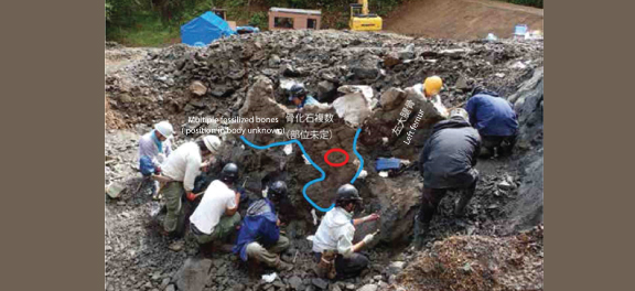 Fig. 2  Photo of the dig site and location where the maxilla was discovered (red circle)