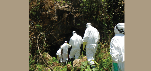 Leopards Hill cave in Zambia where we collected the bat samples
