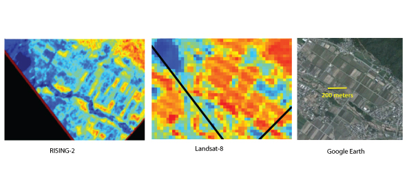 Fig. 2. Close-up of Fig. 1. Spatial resolution of NDVI map made from RISING-2 images is about 10 m, from which we can identify each typical unit of agricultural land. This resolution is the best in the world as a camera which has bands more than few hundreds. On the other hand, in the NDVI map from Landsat-8 we couldn't see right distribution of NDVI.