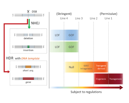 Figure 1. Regulatory models for genome edited crops (simplified version)