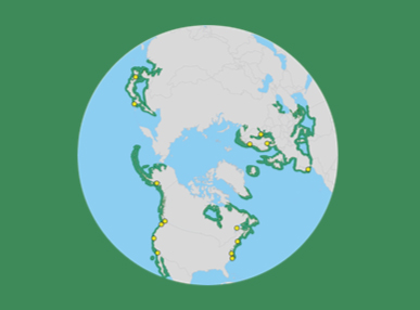 Distribution of eelgrass in the world (green lines) and the study sites (circles)