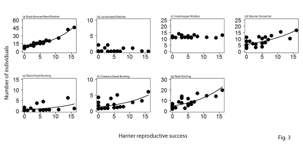 Relationship between the number of fledglings of seven species of small birds, and  harrier reproductive success:  A higher value on the horizontal axis shows higher harrier reproductive success. Each black dot shows the population living per unit area in each wetland. The curves indicate that the abundance has a statistically significant relationship with harrier reproductive success. For the three species, the Siberian rubythroat, the long-tailed rosefinch, and the water rail, the abundances in the investigation were small, so analysis was not possible.