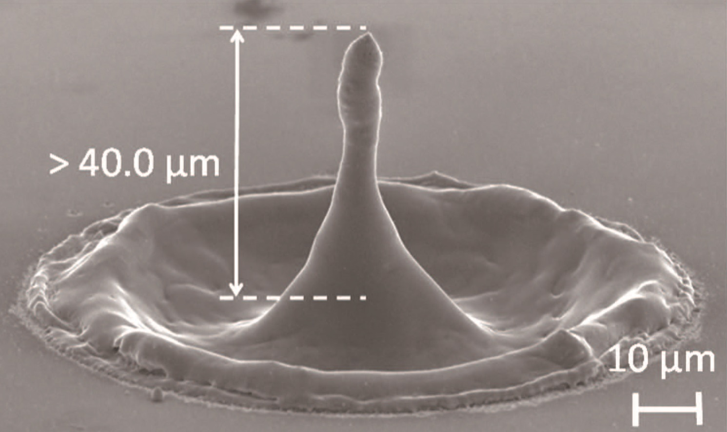 Silicon needle fabricated by the irradiation of 12 overlaid picosecond vortex pulses with a pulse energy of 0.6 mJ.