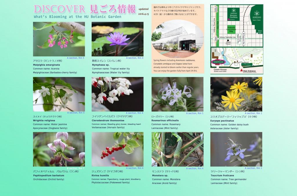 Apr2016_0415_Eng_Botanic-Garden