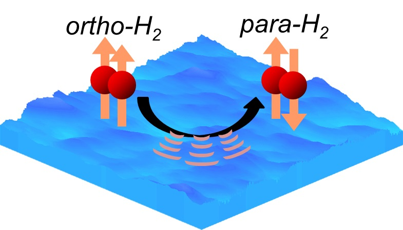 Ortho-to-para conversion of molecular hydrogen on an extremely low temperature ice surface. Ortho-hydrogen converts to para-hydrogen by releasing energy to the ice surface. The conversion rate differed depending on the ice temperature.