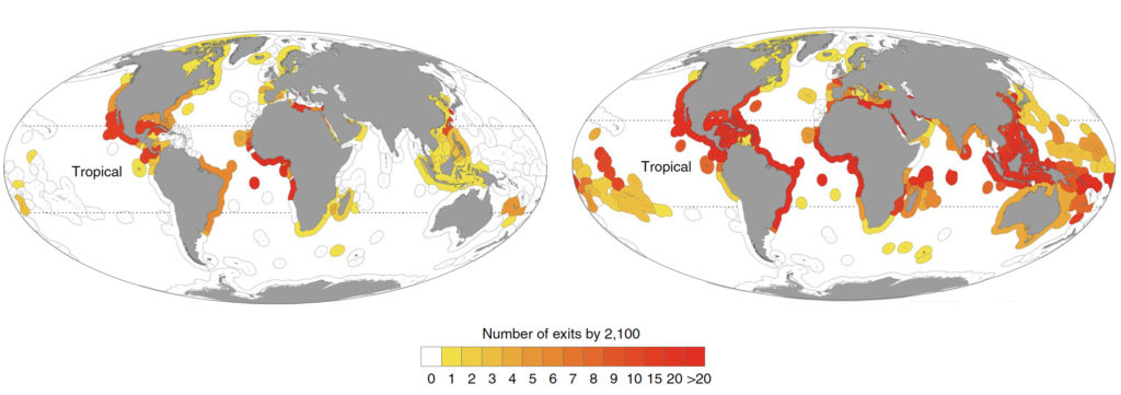 The number of species shifting out of each exclusive economic zone (EEZ) by the year 2100 under a moderate (RCP 4.5, left) and more severe (RCP 8.5, right) greenhouse gas emissions scenario. (Kimberly L. Oremus et al., Nature Sustainability. February 24, 2020)