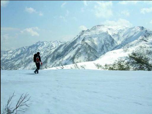 Professor Kawabata trekking a mountain in Hokkaido