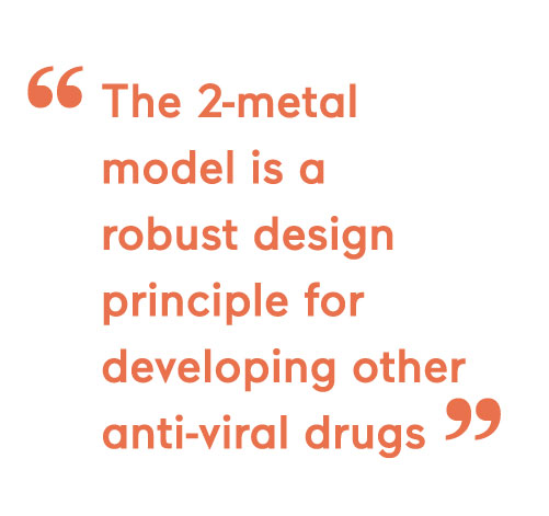 The 2-metal model is a robust design principle for developing other anti-viral drugs