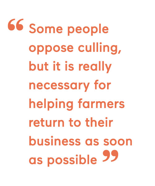 Some people oppose culling, but it is really necessary for helping farmers return to their business as soon as possible